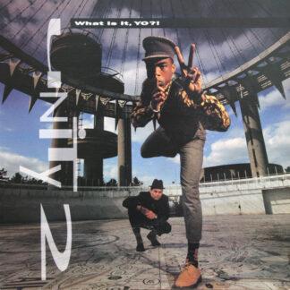 Unity 2 - What Is It, Yo?! (LP, Album)