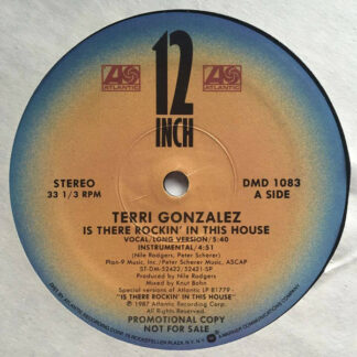 """Terri Gonzalez - Is There Rockin' In This House (12"""", Promo)"""