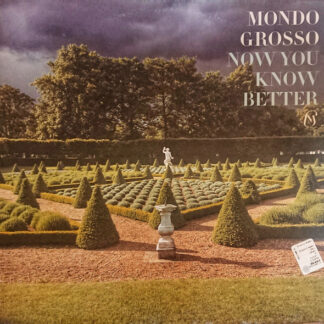 """Mondo Grosso - Now You Know Better (12"""")"""