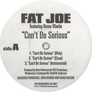 """Fat Joe Featuring Remy Martin / Moe Mansun - Can't Be Serious / What They Talkin' Bout (12"""", Promo)"""