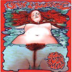 Baby Woodrose - Blows Your Mind! (LP, Album, Ltd, RE)