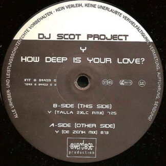 "DJ Scot Project - Y (How Deep Is Your Love?) (2x12"")"