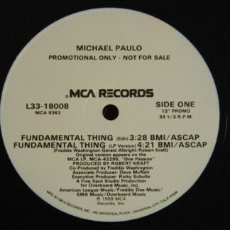 "Michael Paulo - Fundamental Thing (12"", Single, Promo)"