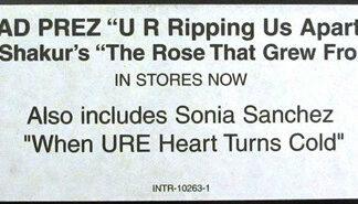 """Dead Prez - U R Ripping Us Apart!!! (12"""", Promo)"""