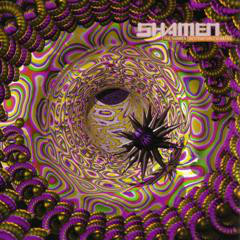 """The Shamen - Destination Eschaton (12"""")"""
