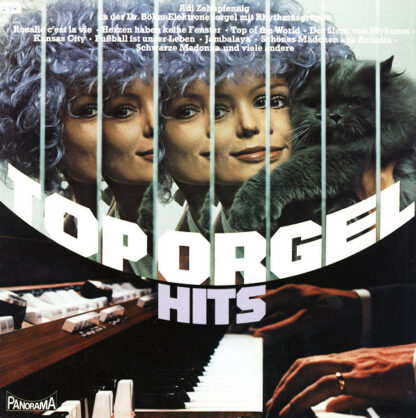 Adi Zehnpfennig* - Top Orgel Hits (LP)
