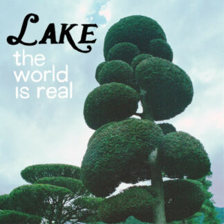 Lake (4) - The World Is Real (LP)