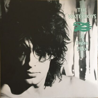 The Waterboys - A Pagan Place (LP, Album, RE, RM, 180)