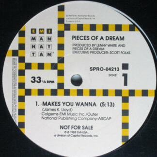 """Pieces Of A Dream - Makes You Wanna (12"""", Single, Promo)"""