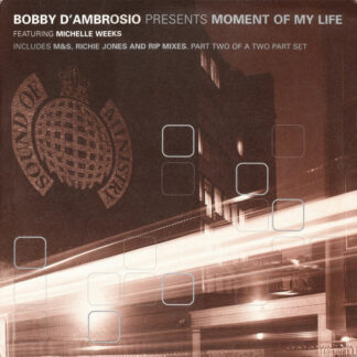 """Bobby D'Ambrosio Featuring Michelle Weeks - Moment Of My Life (12"""", 2/2)"""