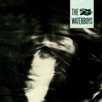 The Waterboys - The Waterboys (LP, Album, RE, RM, 180)