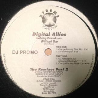 "Digital Allies Featuring Richard Luzzi - Without You (12"", Single, Promo)"