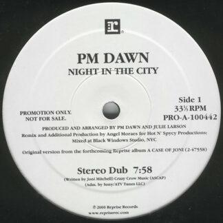 """PM Dawn* - Night In The City (12"""", Promo)"""