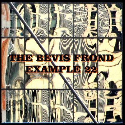 The Bevis Frond - Example 22 (2xLP, Album)