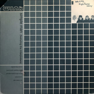 "Wink* Featuring The Interpreters - Simple Man (12"")"