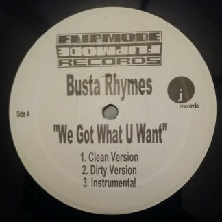 "Busta Rhymes - We Got What U Want (12"", Unofficial)"